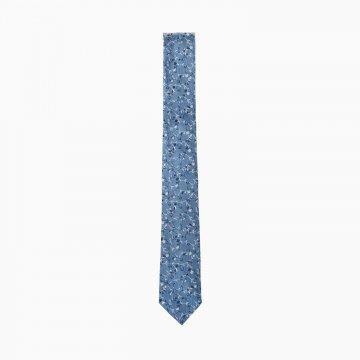 Pánská kravata T6800004171